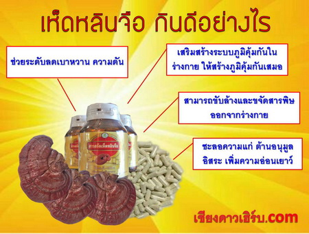 เห็ดหลินจือยาแคปซูล คุณภาพGMP อาหารเสริม