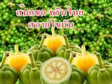 ลดไขมัน ส้มแขกพริกไทยดำ