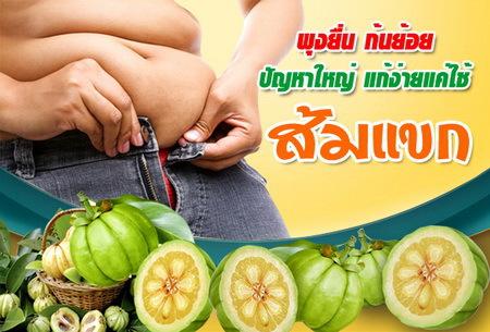 ส้มแขก ลดความอ้วนและยาระบาย